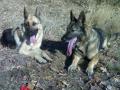 Nikita (vlevo)