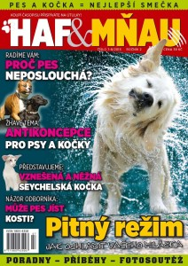 titulka HM7-8/2013