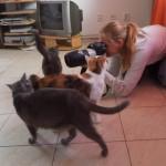 Aneta v obležení koček :)