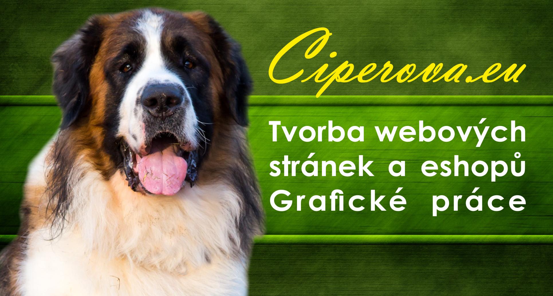 Tvorba webových stránek a eshopů - Ciperova.eu